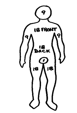 torso track manual